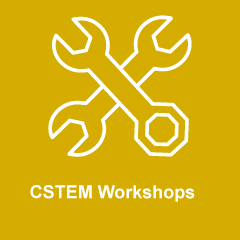 CSTEM Workshop